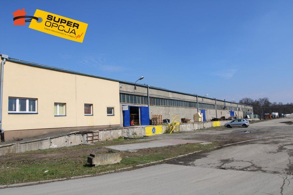 Lokal użytkowy na wynajem Kraków, Czyżyny  280m2 Foto 10