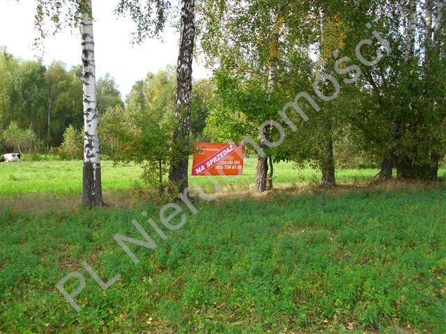 Działka rolna na sprzedaż Holendry Baranowskie  4000m2 Foto 1
