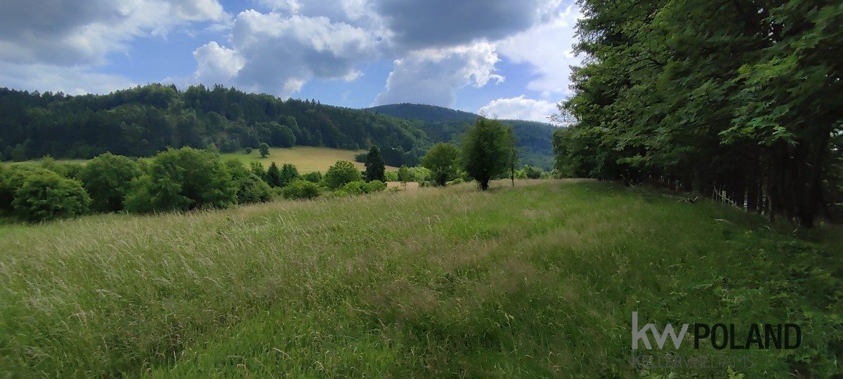 Działka rolna na sprzedaż Kudowa-Zdrój, Pstrążna  7250m2 Foto 7