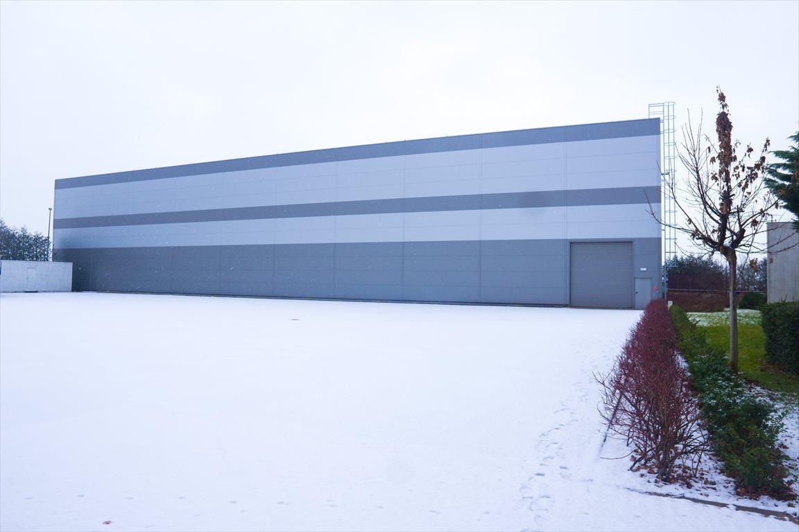 Lokal użytkowy na wynajem Wolsztyn, Przemysłowa 6a  2671m2 Foto 11