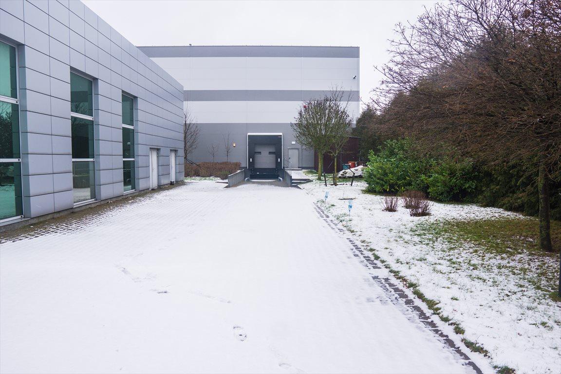 Lokal użytkowy na wynajem Wolsztyn, Przemysłowa 6a  2671m2 Foto 14