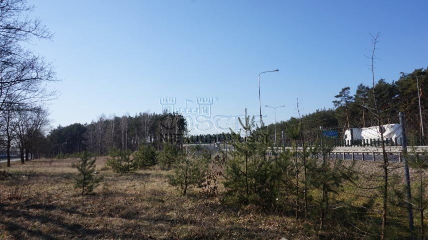 Działka inwestycyjna na sprzedaż Dąbrowa, Bukowska/Pasjonatów  3806m2 Foto 10