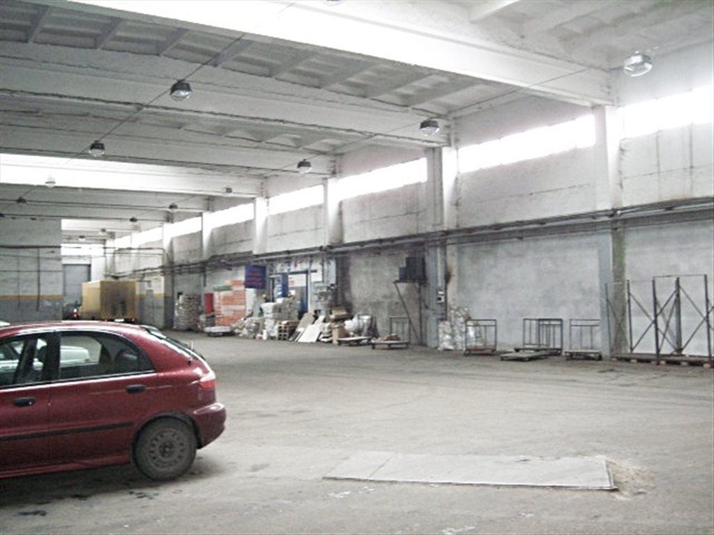 Lokal użytkowy na sprzedaż Nowy Dwór Mazowiecki, ul. Przemysłowa  36903m2 Foto 9