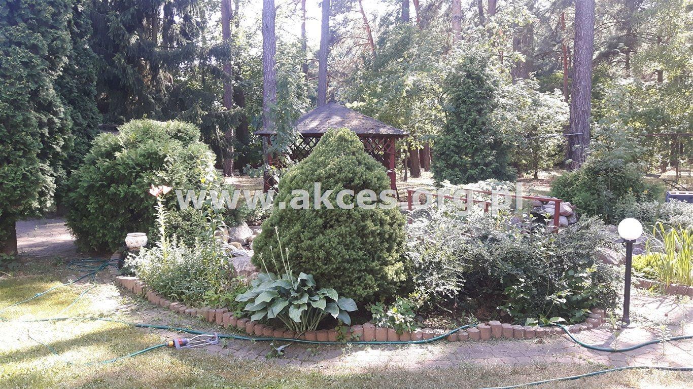 Lokal użytkowy na sprzedaż Baniocha  1000m2 Foto 12