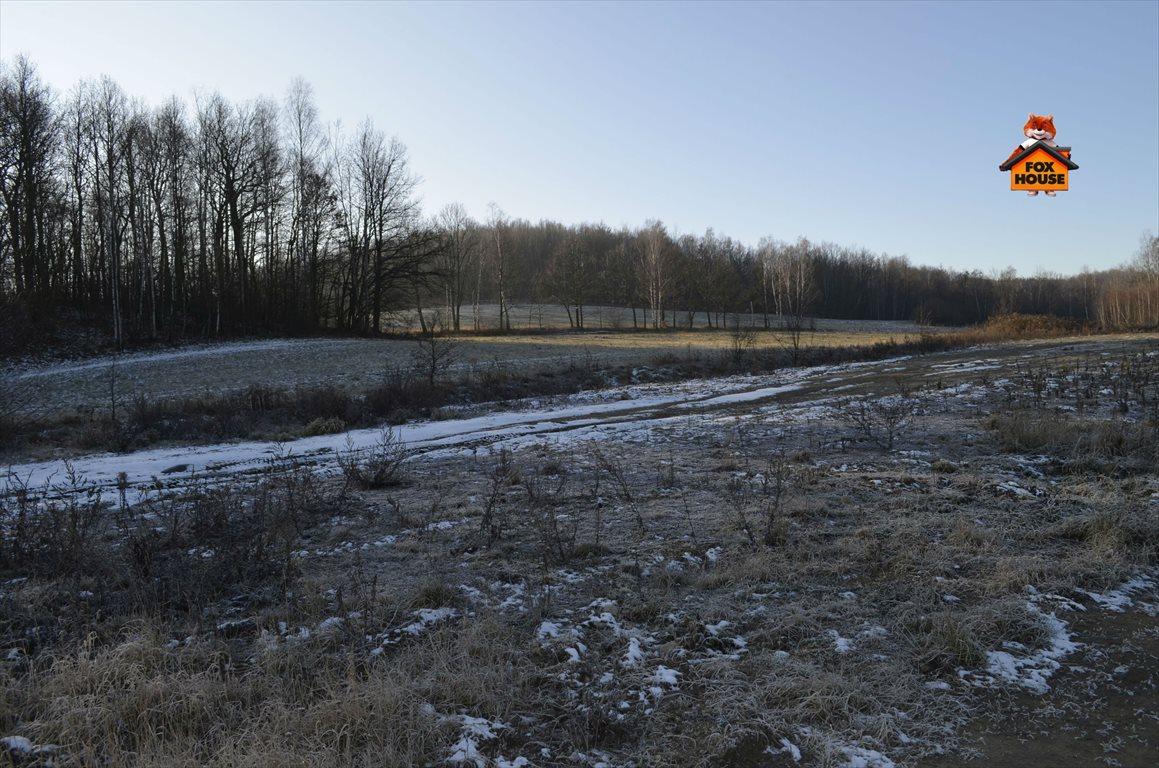 Działka budowlana na sprzedaż Mysłakowice  1000m2 Foto 2