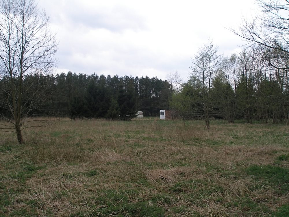 Działka budowlana na sprzedaż Łaniewo  4769m2 Foto 2