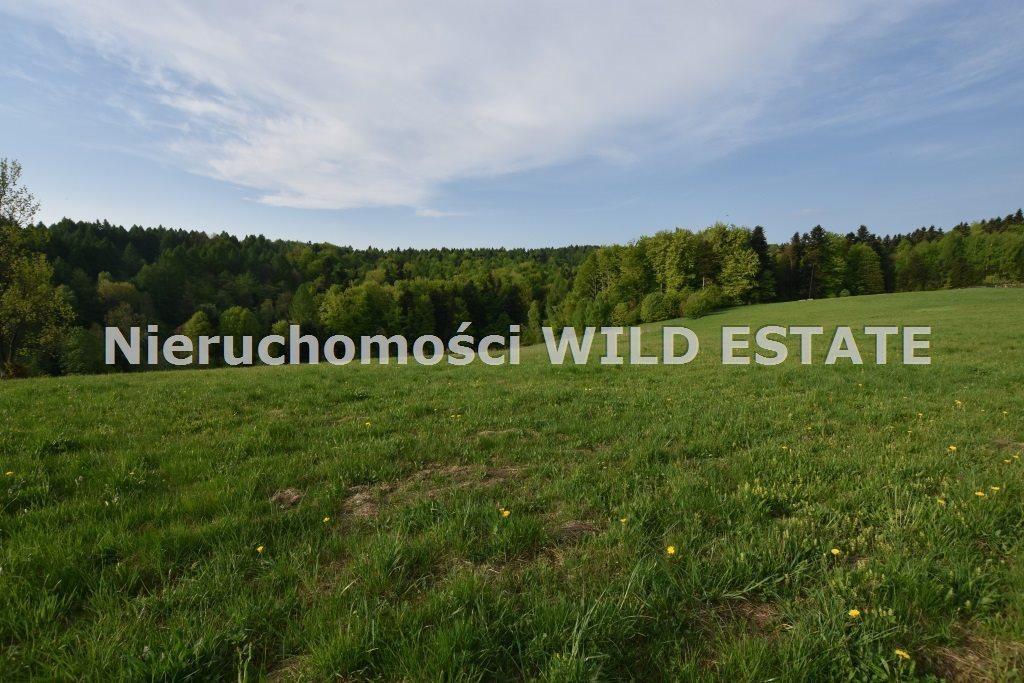 Działka budowlana na sprzedaż Zagórz, Brzozowiec  7363m2 Foto 6