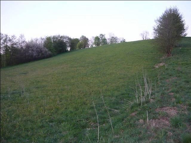 Działka rolna na sprzedaż Bieniasze, Wieś Nad Jez. Bieniaskim, Bieniasze  14800m2 Foto 3