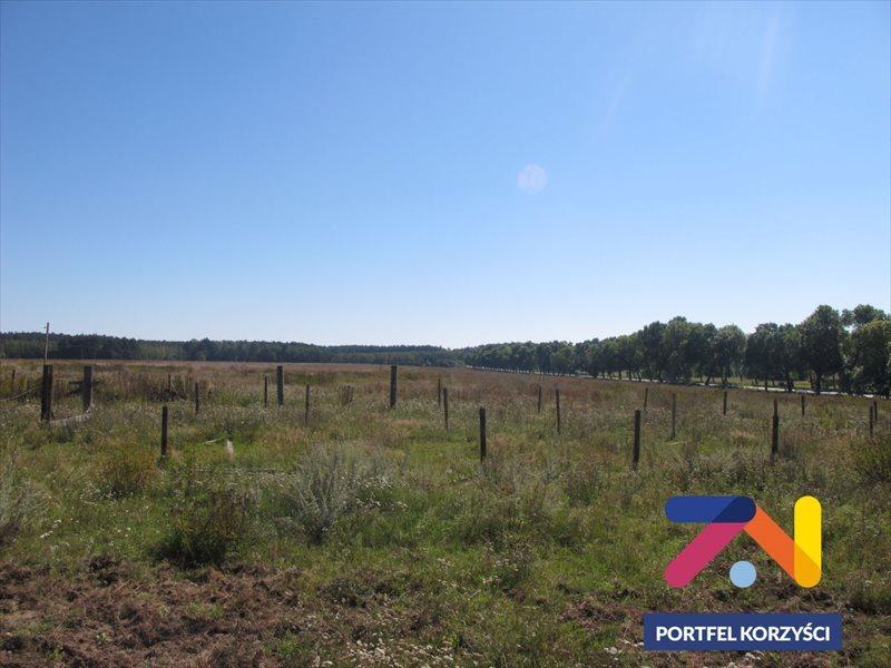 Działka rolna na sprzedaż Dąbie  152046m2 Foto 1