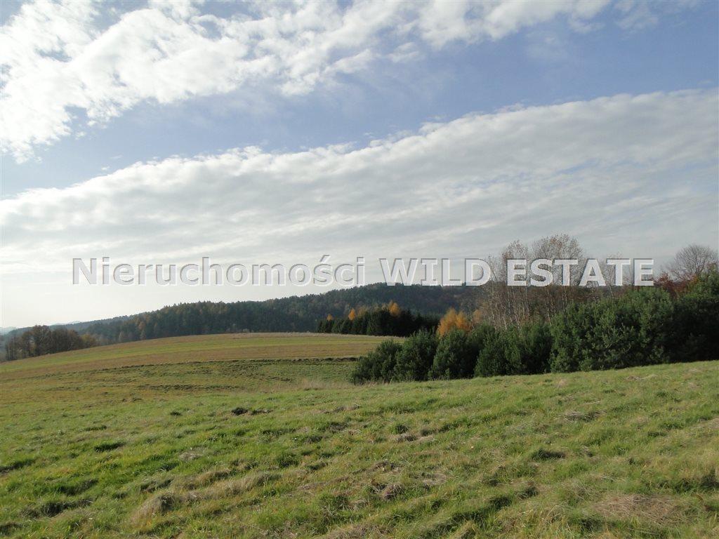 Działka rolna na sprzedaż Solina, Berezka  10398m2 Foto 3