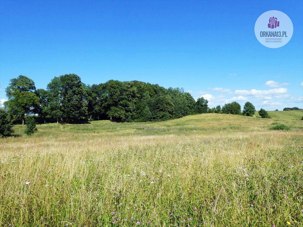 Działka rolna na sprzedaż Orzechowo, gm. Dobre Miasto  198900m2 Foto 8