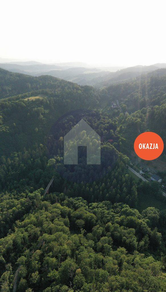 Działka budowlana na sprzedaż Srebrna Góra  5850m2 Foto 1