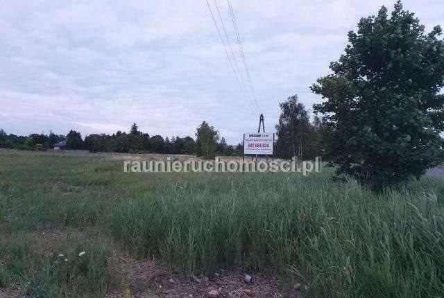 Działka przemysłowo-handlowa na sprzedaż Tarnowo Podgórne, Poznańska  58200m2 Foto 11