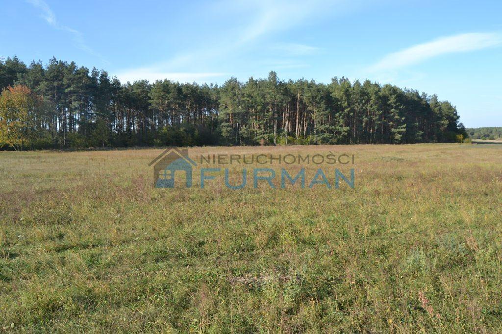 Działka rolna na sprzedaż Gościejewo  45100m2 Foto 6