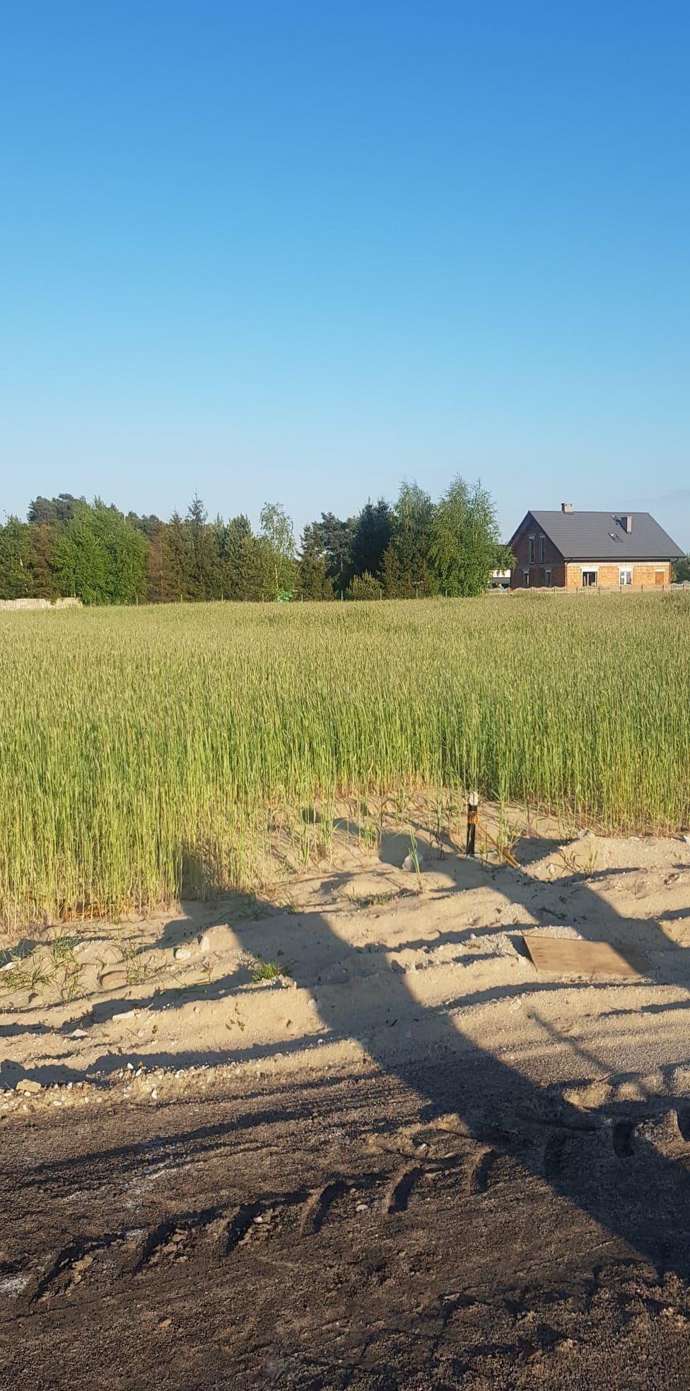 Działka budowlana na sprzedaż Piotrów  1000m2 Foto 1