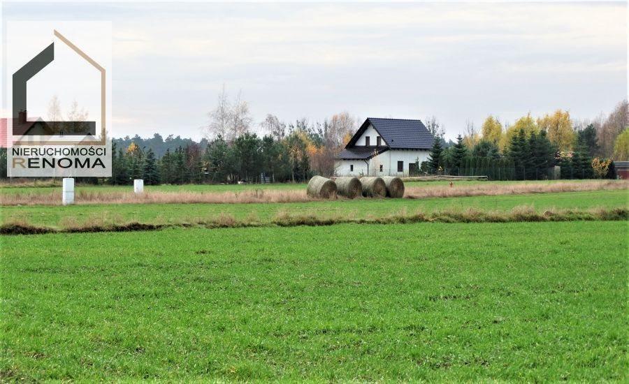 Działka rolna na sprzedaż Rościnno, , Rościnno, Skoki, Wągrowiec, Poznań  40982m2 Foto 5