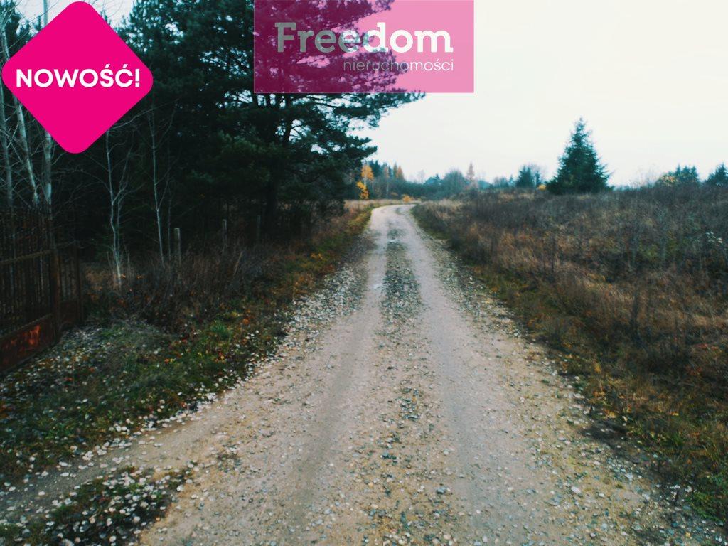 Działka siedliskowa na sprzedaż Strabla  3600m2 Foto 4