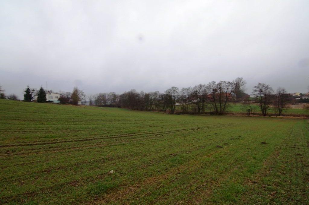 Działka rolna na sprzedaż Malbork, Koniecwałd  13802m2 Foto 1