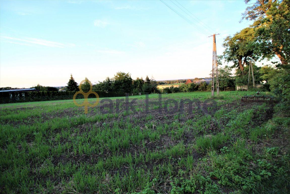 Działka rolna na sprzedaż Kurów Wielki  2167m2 Foto 3