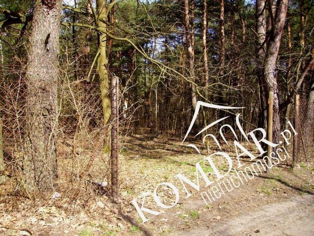 Działka budowlana na sprzedaż Owczarnia  6200m2 Foto 6