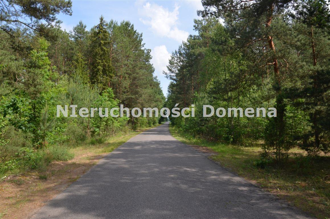 Działka leśna na sprzedaż Poświętne  2100m2 Foto 1