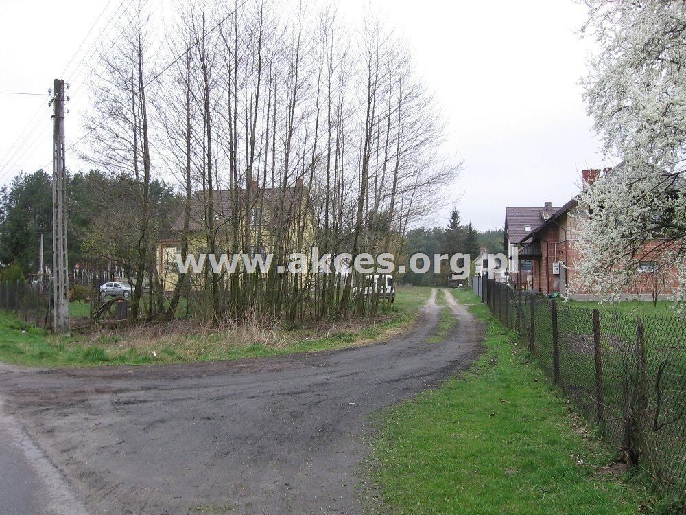Działka leśna na sprzedaż Kędzierówka  3800m2 Foto 1