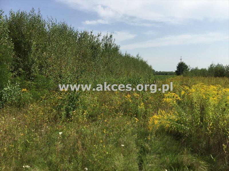 Działka rolna na sprzedaż Zawodne  1200m2 Foto 6