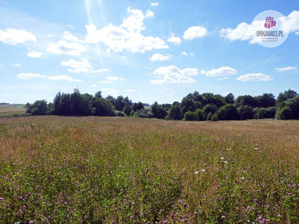 Działka rolna na sprzedaż Orzechowo, gm. Dobre Miasto  198900m2 Foto 6