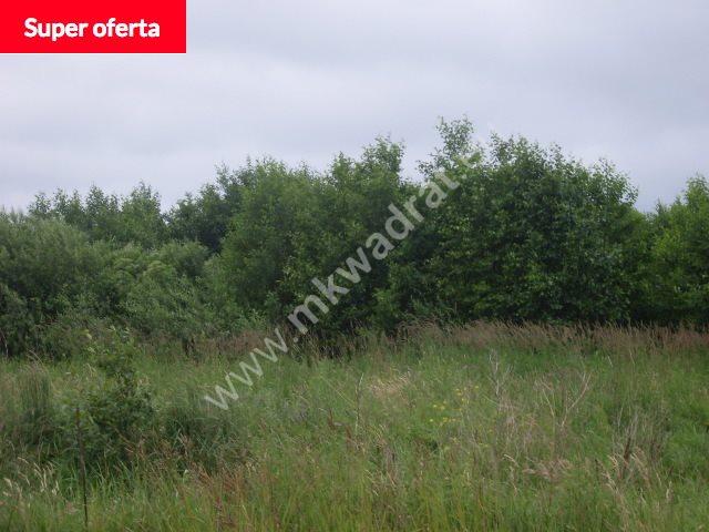 Działka komercyjna na sprzedaż Urzut  36807m2 Foto 1