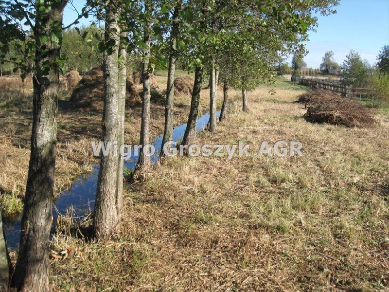 Działka inna na sprzedaż Stręgiel  22470m2 Foto 7