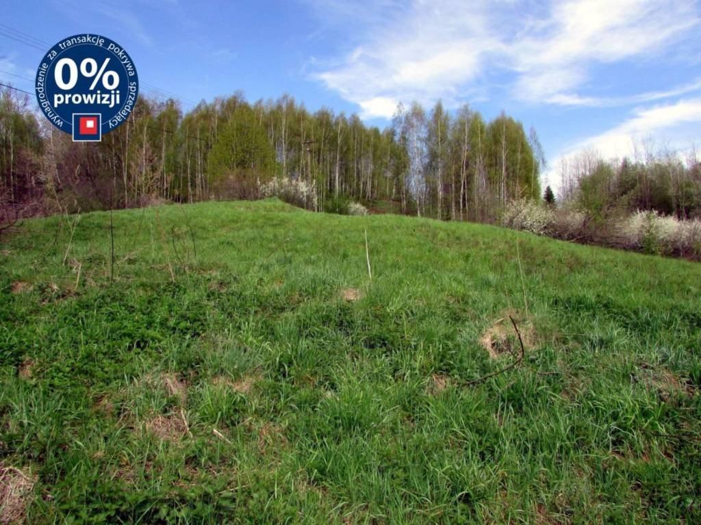 Działka inwestycyjna na sprzedaż Nowy Borek, Nowy Borek, Nowy Borek  5019m2 Foto 1