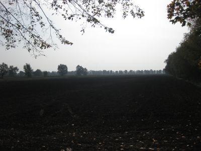 Działka inna na sprzedaż Kazimierzowo, Kazimierzowo  21734m2 Foto 4