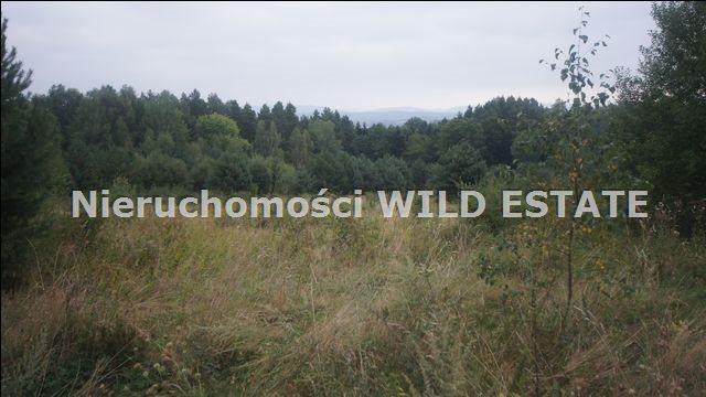 Działka rolna na sprzedaż Lesko, Huzele  88812m2 Foto 7