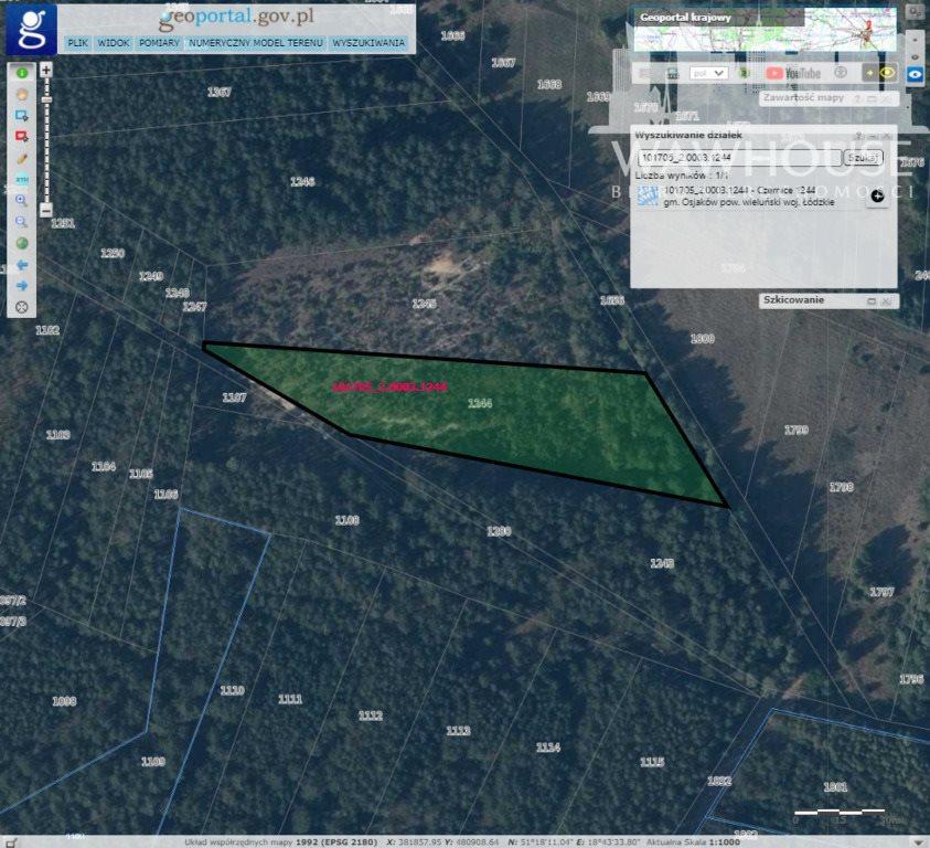 Działka leśna na sprzedaż Czernice  23500m2 Foto 8
