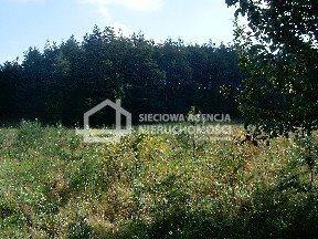 Działka budowlana na sprzedaż Donimierz  4980m2 Foto 3