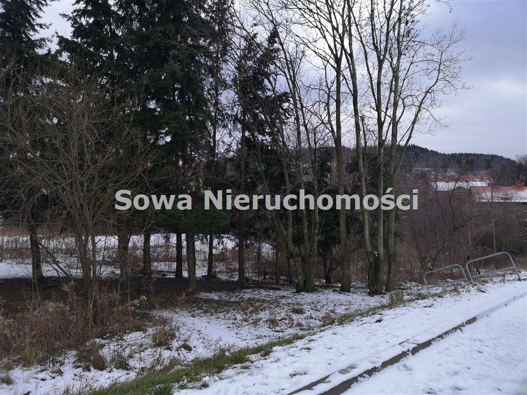 Działka inna na sprzedaż Wałbrzych, Biały Kamień  6000m2 Foto 2