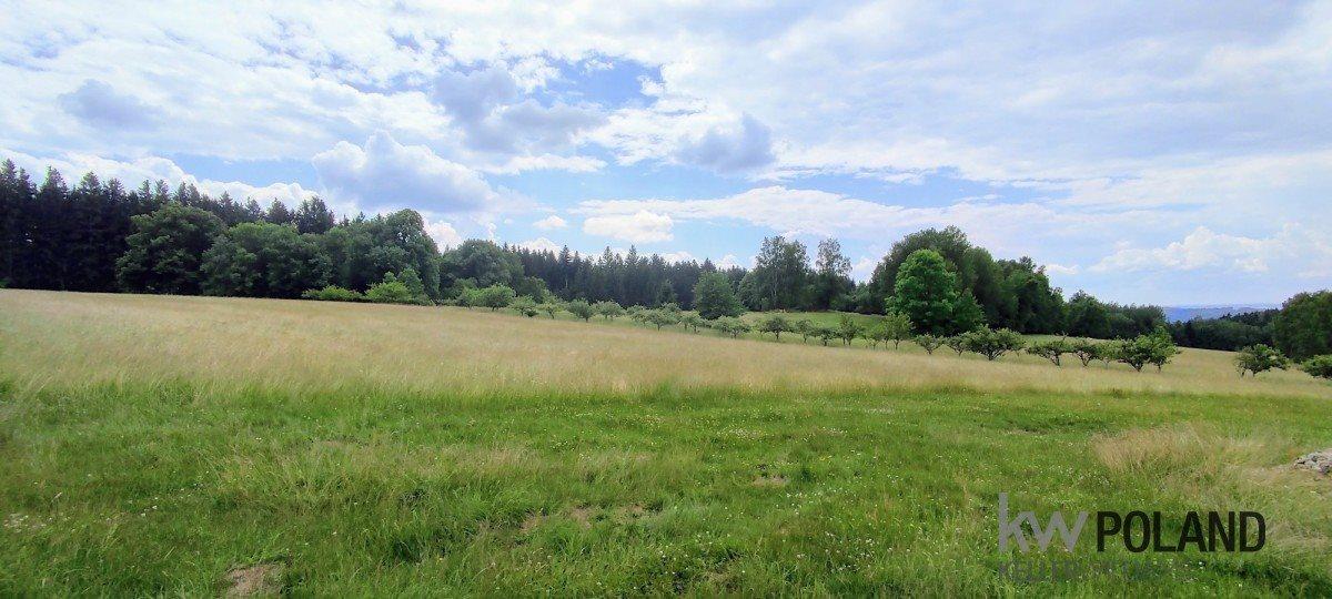 Działka rolna na sprzedaż Kudowa-Zdrój, Pstrążna  4386m2 Foto 9