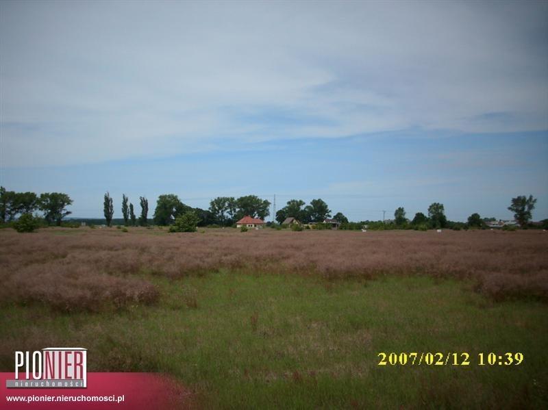 Działka rolna na sprzedaż Rurzyca  1368m2 Foto 1