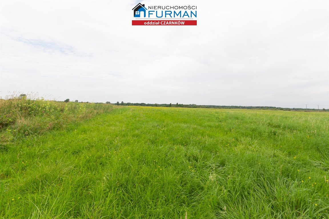 Działka rolna na sprzedaż Kuźnica Czarnkowska  7100m2 Foto 2