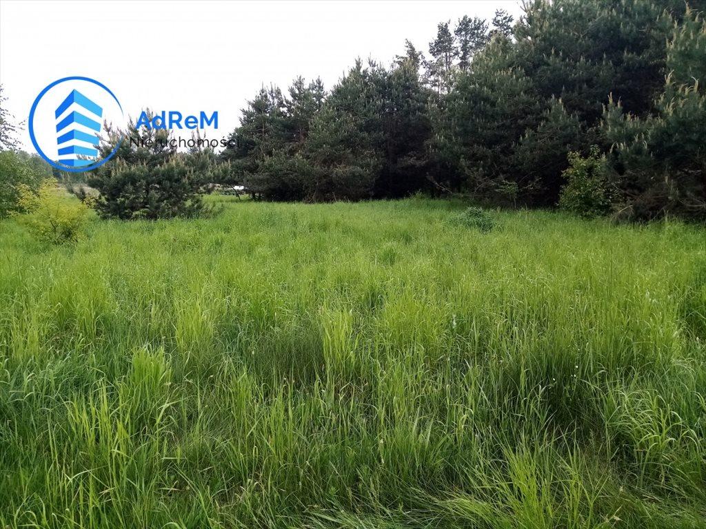 Działka rolna na sprzedaż Iwanówka  3000m2 Foto 3