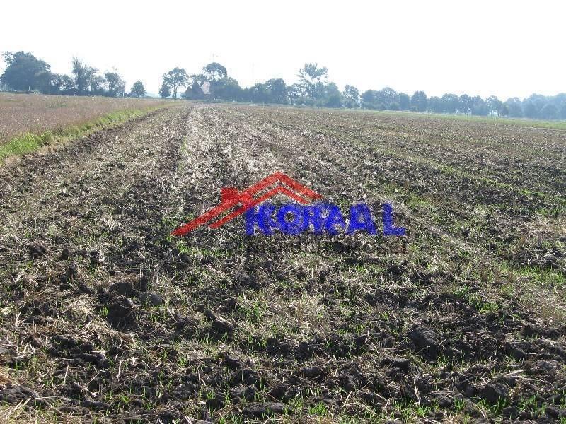 Działka rolna na sprzedaż Żerniki Wrocławskie, Dębowa  3366m2 Foto 1
