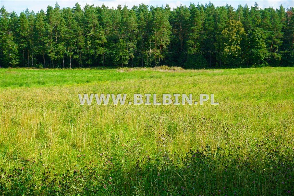 Działka inna na sprzedaż Barszczowa Góra  11900m2 Foto 3