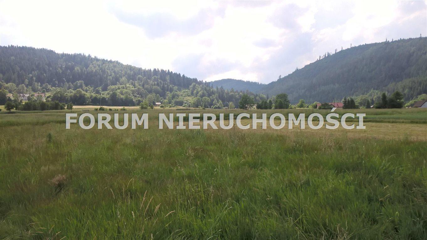 Działka rolna na sprzedaż Słotwina  1600m2 Foto 4