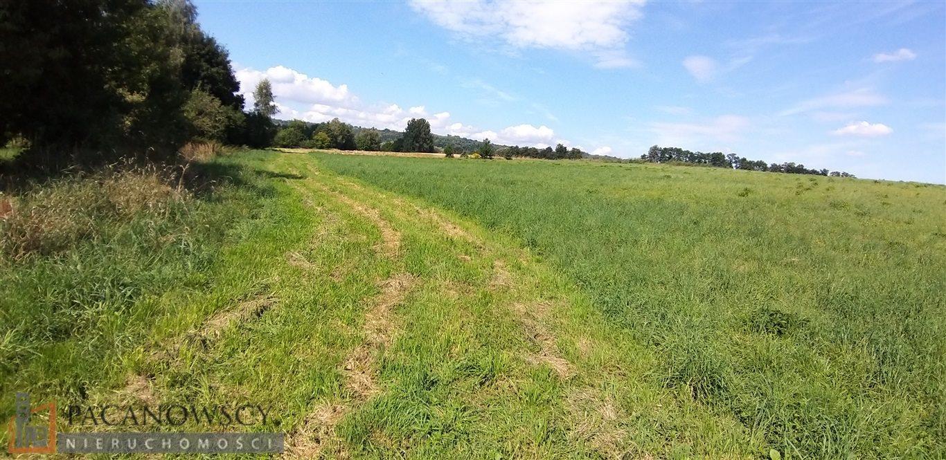 Działka rolna na sprzedaż Bolechowice  3000m2 Foto 2