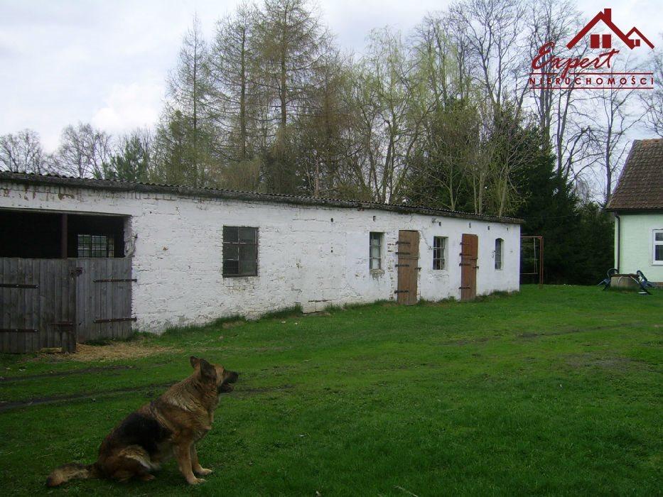 Dom na sprzedaż Makowo  66300m2 Foto 2