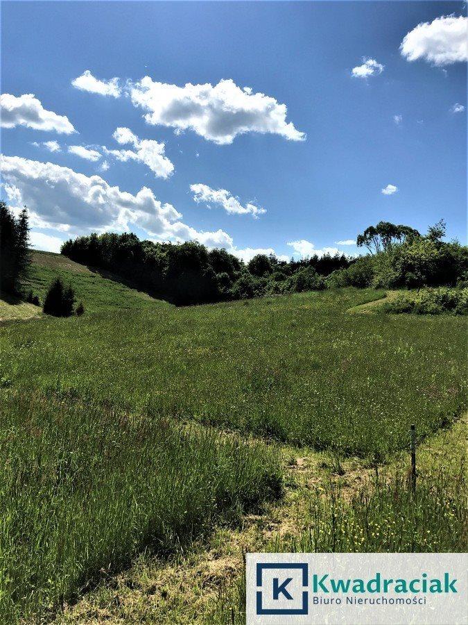 Działka rolna na sprzedaż Bachlawa  15500m2 Foto 8