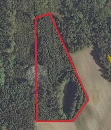 Działka rolna na sprzedaż Grabowo  27100m2 Foto 10