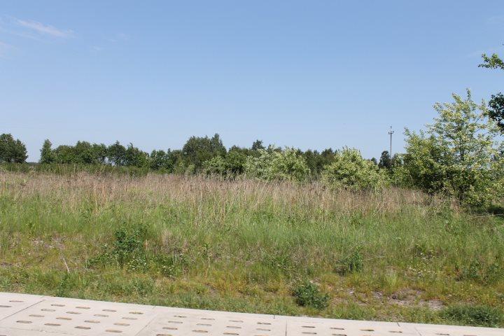 Działka rolna na sprzedaż Łódź, Widzew, Stare Moskule, Opolska  14997m2 Foto 7