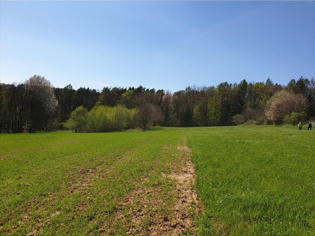 Działka rolna na sprzedaż Czudec, Czudec  8800m2 Foto 6