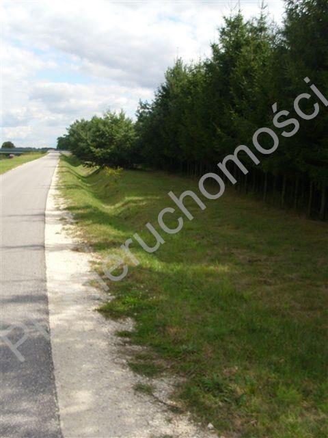 Działka rolna na sprzedaż Mszczonów  4015m2 Foto 1